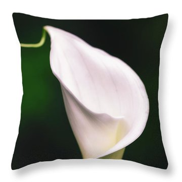Natural Grace Throw Pillow