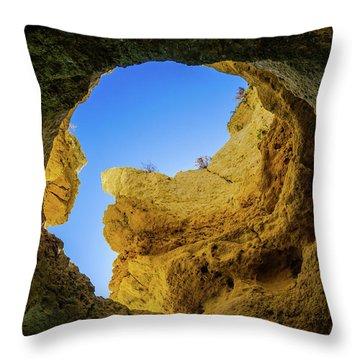 Natural Skylight Throw Pillow