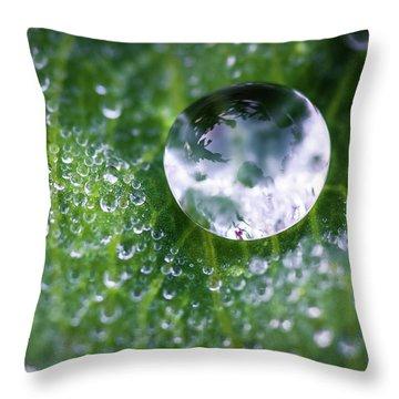 Natures Crystal Ball Throw Pillow