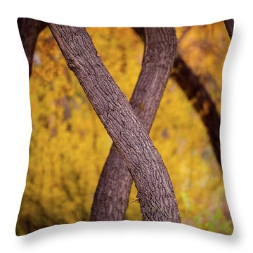 Throw Pillow featuring the photograph Nature's Font by Jeff Phillippi