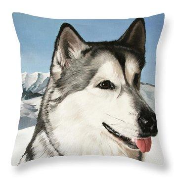 Nayuk Alaska Malamute Throw Pillow