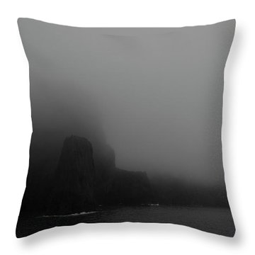 Near The End Of The World Throw Pillow