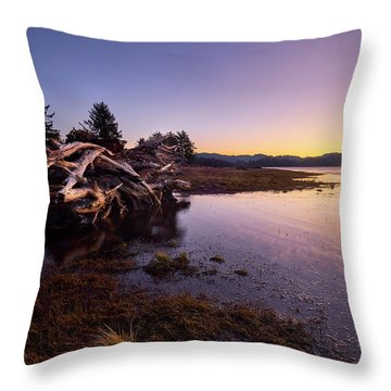 Throw Pillow featuring the photograph Nehalem Bay Sunrise by Whitney Goodey