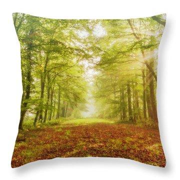 Neither Summer Nor Winter But Autumn Light Throw Pillow