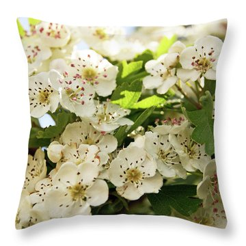Neston.  Hawthorn Blossom. Throw Pillow