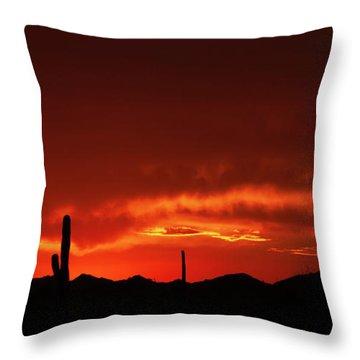 Throw Pillow featuring the photograph New Beginnings by Rick Furmanek