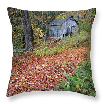 Throw Pillow featuring the photograph New England Autumn Woods by Bill Wakeley