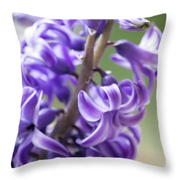 New Year Purple Throw Pillow
