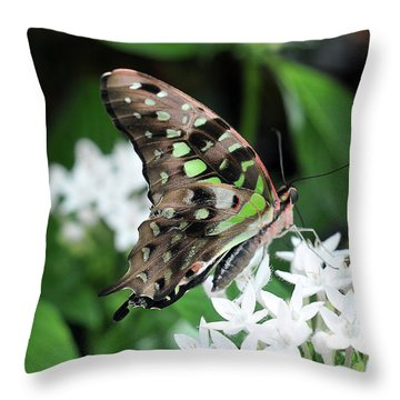 Throw Pillow featuring the photograph Nicely by Michelle Wermuth