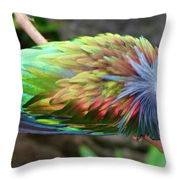 Nicobar Pigeon Throw Pillow