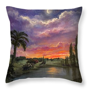 Night By Light Of Day Throw Pillow