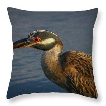 Night Heron Portrait Throw Pillow