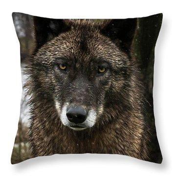 Niko Portrait Throw Pillow