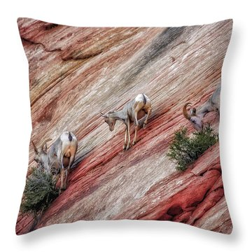 Nimble Mountain Goats 5694 Throw Pillow