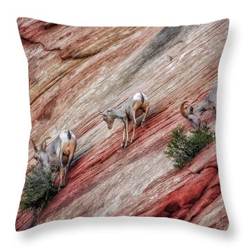 Nimble Mountain Goats 5694 Throw Pillow