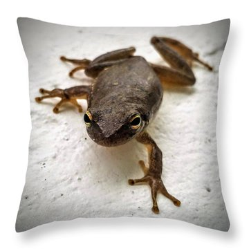 Throw Pillow featuring the photograph Ninja Frog by Vincent Autenrieb