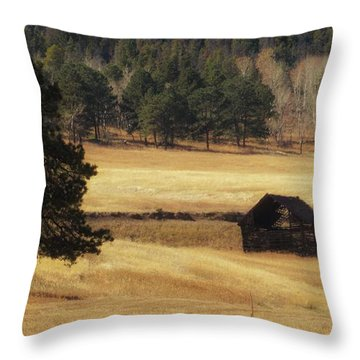 Throw Pillow featuring the photograph Noble Meadow Barn by Lukas Miller
