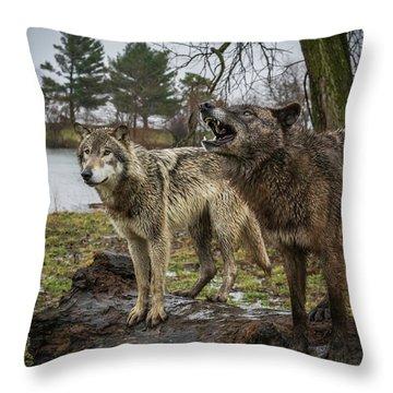 Noisy Wolf Throw Pillow