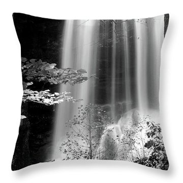 North Carolina Falls Throw Pillow