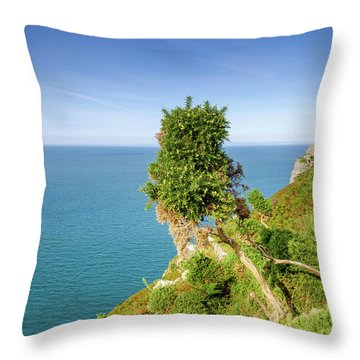 North Devon Coast Throw Pillow
