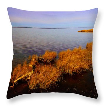 Northern Exposure  Throw Pillow