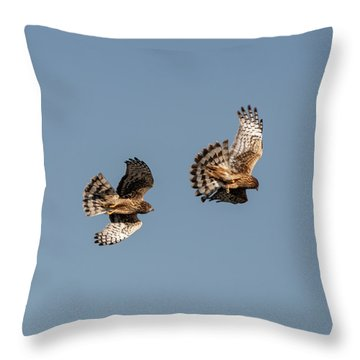 Northern Harriers 7 Throw Pillow