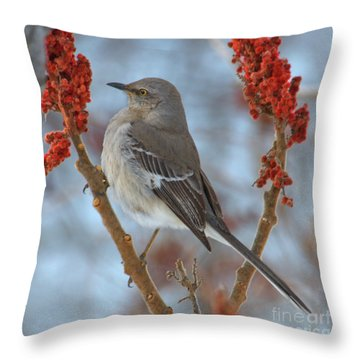 Throw Pillow featuring the photograph Northern Mockingbird by Debbie Stahre