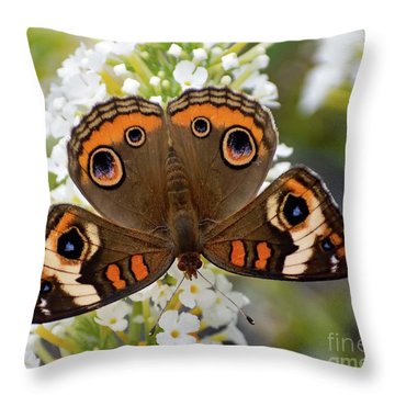 Nothing Common About The Common Buckeye Butterfly Throw Pillow