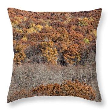 November Color - Throw Pillow