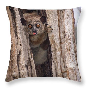 Throw Pillow featuring the photograph Nyah by Alex Lapidus