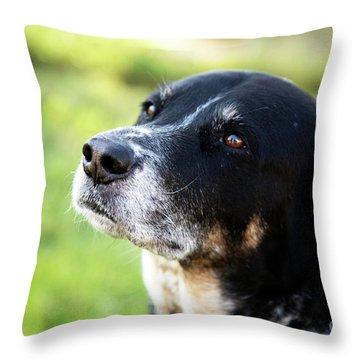 O Happy Day Throw Pillow