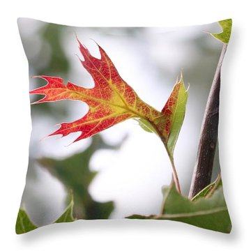Oak Leaf Turning Throw Pillow