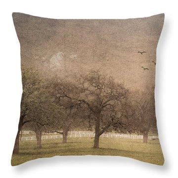 Oak Trees In Fog Throw Pillow