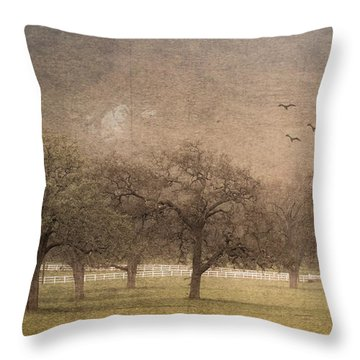 Oak Trees In Fog Throw Pillow