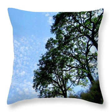 Oaks And Sky Throw Pillow