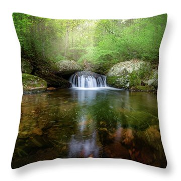 Throw Pillow featuring the photograph Oasis by Bill Wakeley