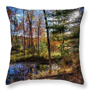October Late Afternoon Throw Pillow