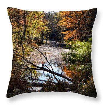 Throw Pillow featuring the photograph October Window by Kendall McKernon