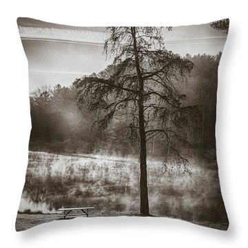 Odd Pair Sepia Throw Pillow