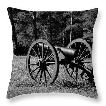 Of Years Gone By Throw Pillow