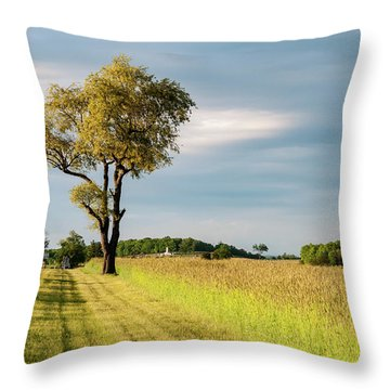 Off The Road Throw Pillow