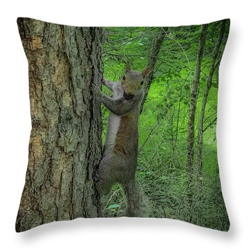 Throw Pillow featuring the photograph Oh Hi by Lora J Wilson