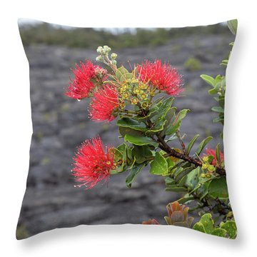 Ohia Blossoms Throw Pillow