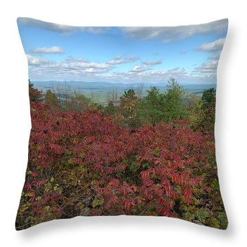 Throw Pillow featuring the photograph Oklahoma Scenic Trail  by Robin Maria Pedrero
