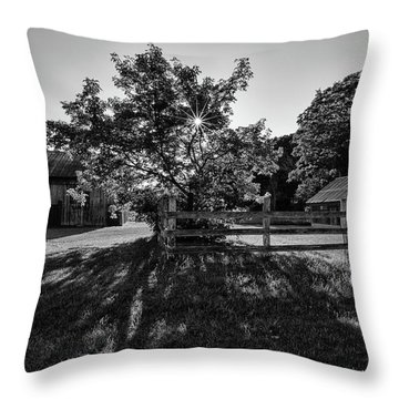 Old Homestead 1 Throw Pillow