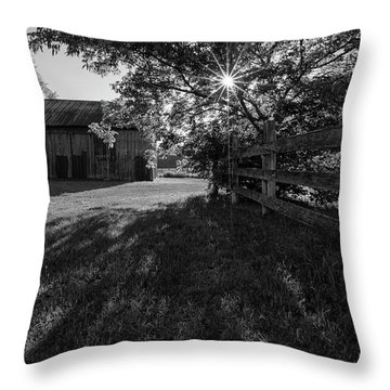 Old Homestead 2 Throw Pillow