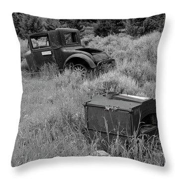 Old Hudson Throw Pillow