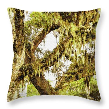 Old Mossy Oaks Throw Pillow