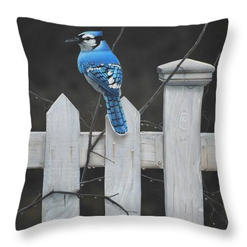 Old Picket Fence Throw Pillow