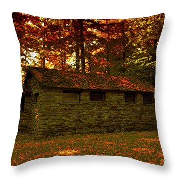 Old Stone Structure Throw Pillow